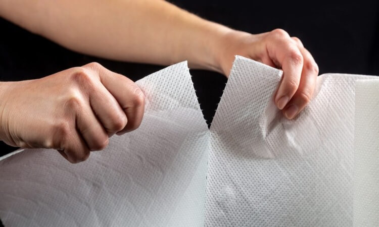Can You Flush Paper Towels? - Know The Proper Disposal
