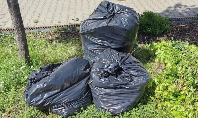 Can You Recycle Trash Bags? - Things You Need To Know