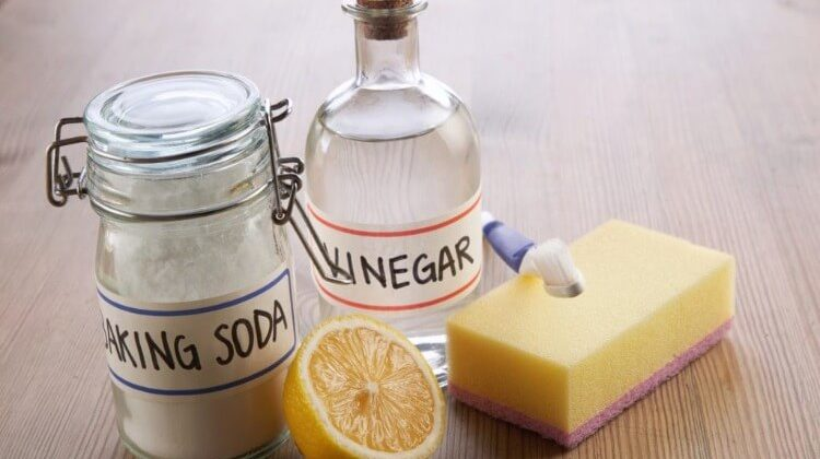 Does Vinegar Disinfect Floors? – Home Remedy Tips