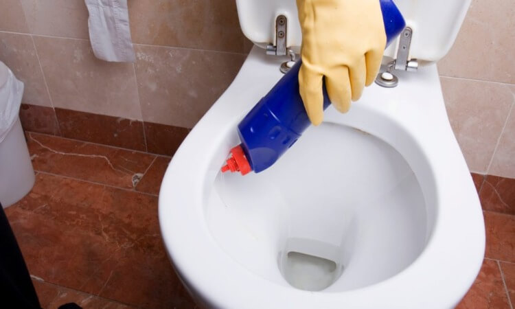 How Does Toilet Bowl Cleaner Work?