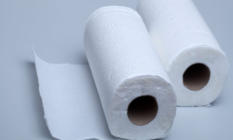 How Long Is A Paper Towel Roll?