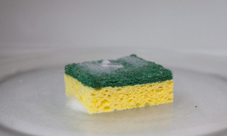 How To Clean Sponge Brushes