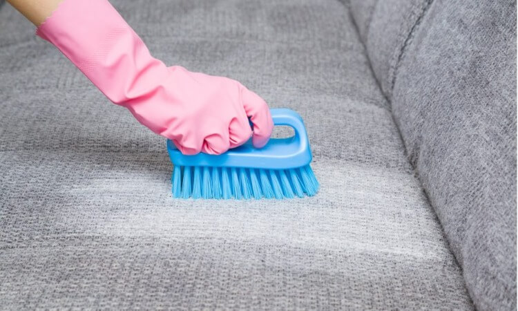 The 7 Best Fabric Cleaners For Your Furniture