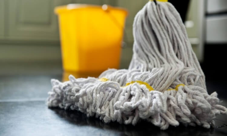The 7 Best Mops For All Floor Types For Easier Cleaning