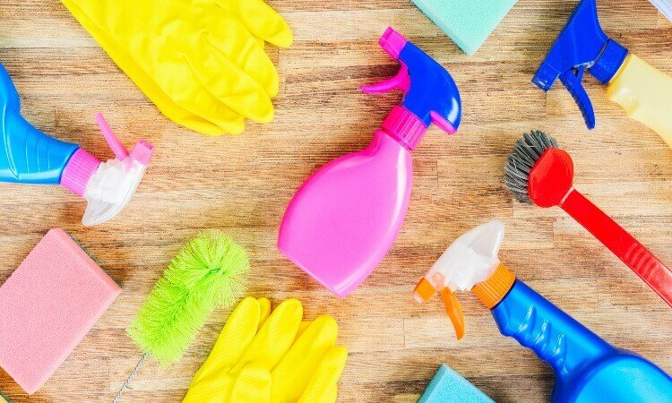 What Are The Cleaning And Sanitizing Equipment: Basic Facts