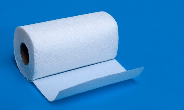 Which Paper Towel Brand Is The Strongest?
